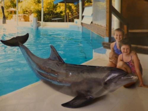Girls Dolphin